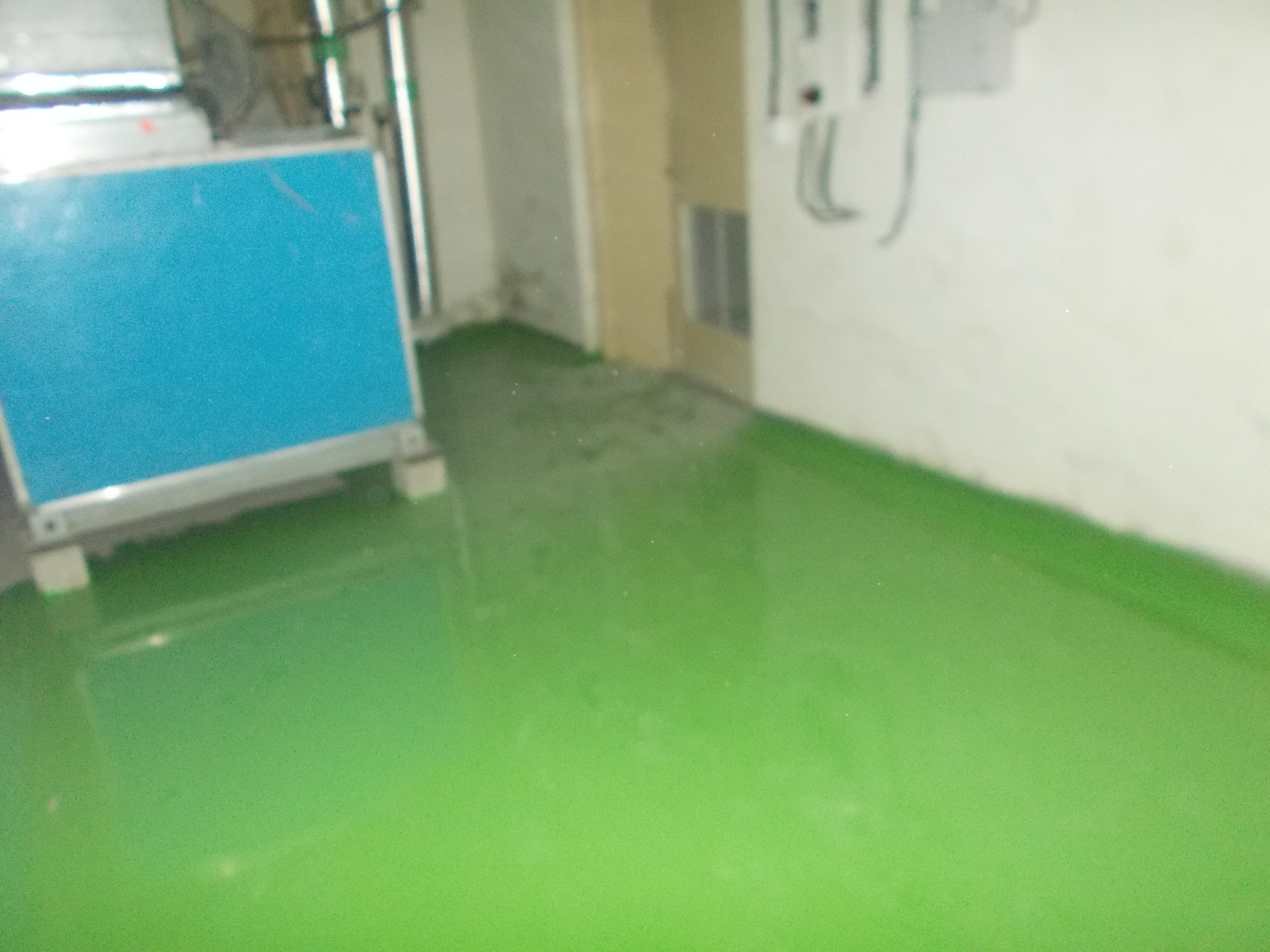 9. Epoxy flooring